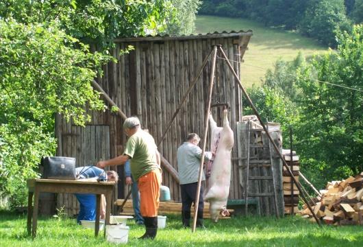 HДомашний Убой Свиней + Живая Музыка в Чешской Республике