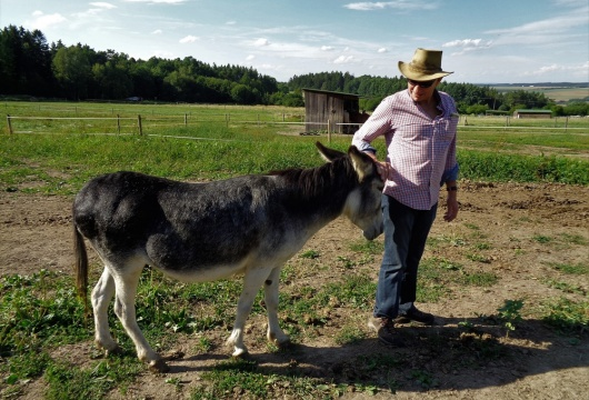Donkey Pilgrimage in the Czech Republic: Pilsen Region