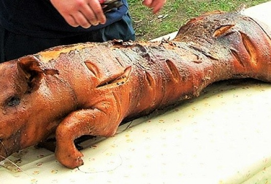 Schweinegrillen in der Tschechischen Republik: Region Pilsen