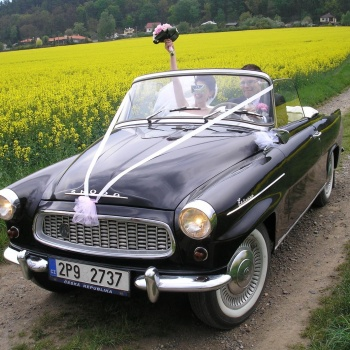 Classic Car Tour in the Czech Republic: Pilsen Region - SKODA OCTAVIA