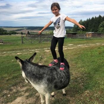 Donkey Pilgrimage in the Czech Republic: Pilsen Region