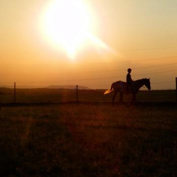 Farm Life in the Czech Republic: West Bohemia