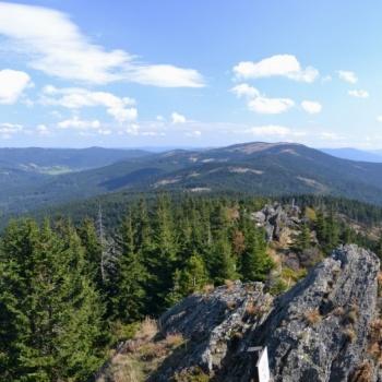 Mountain Track in the Czech Republic: Šumava (Bohemian) Forest